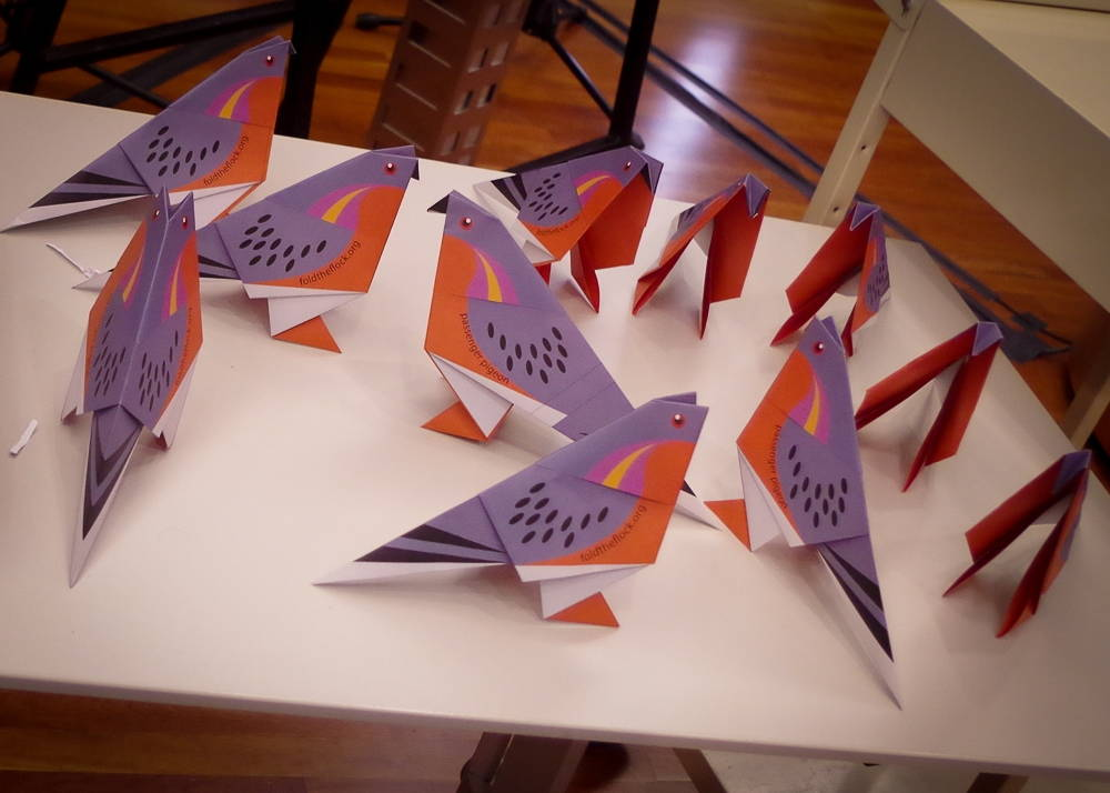 Origami Passenger Pigeons from the Fold the Flock project. Photography by Rob Emmett, 2014.