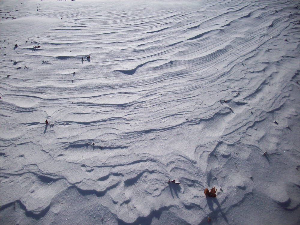 Patterns in the snow (Filipiak, 2014)