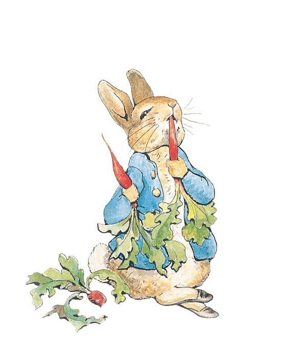 Down The Peter Rabbit Hole Literary Adventures For Little Ones