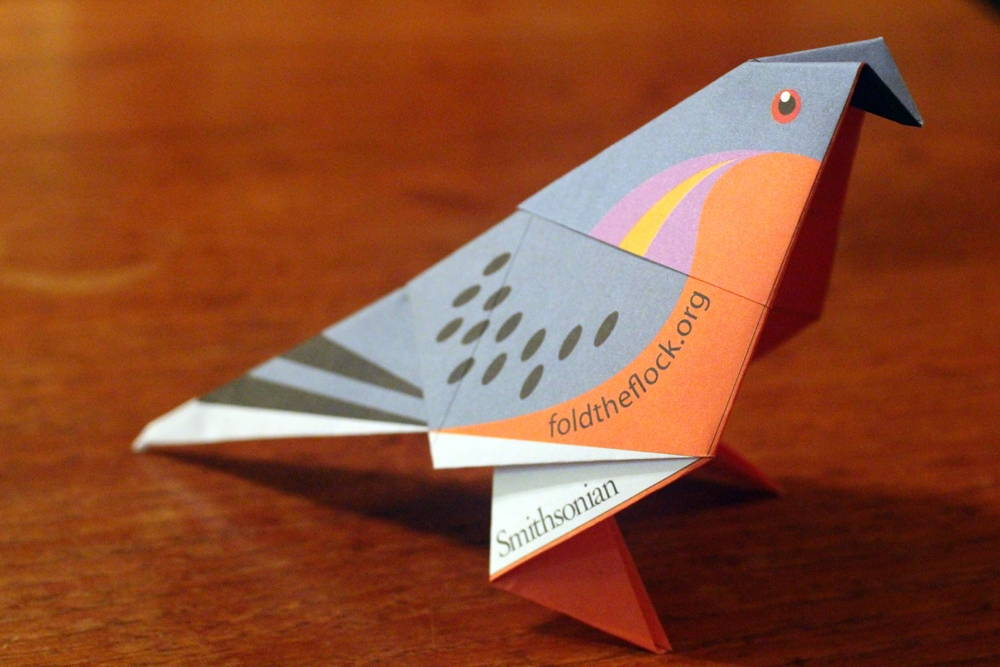 Origami Passenger Pigeon from the Fold the Flock Project. Photo by Jesse Oak Taylor.