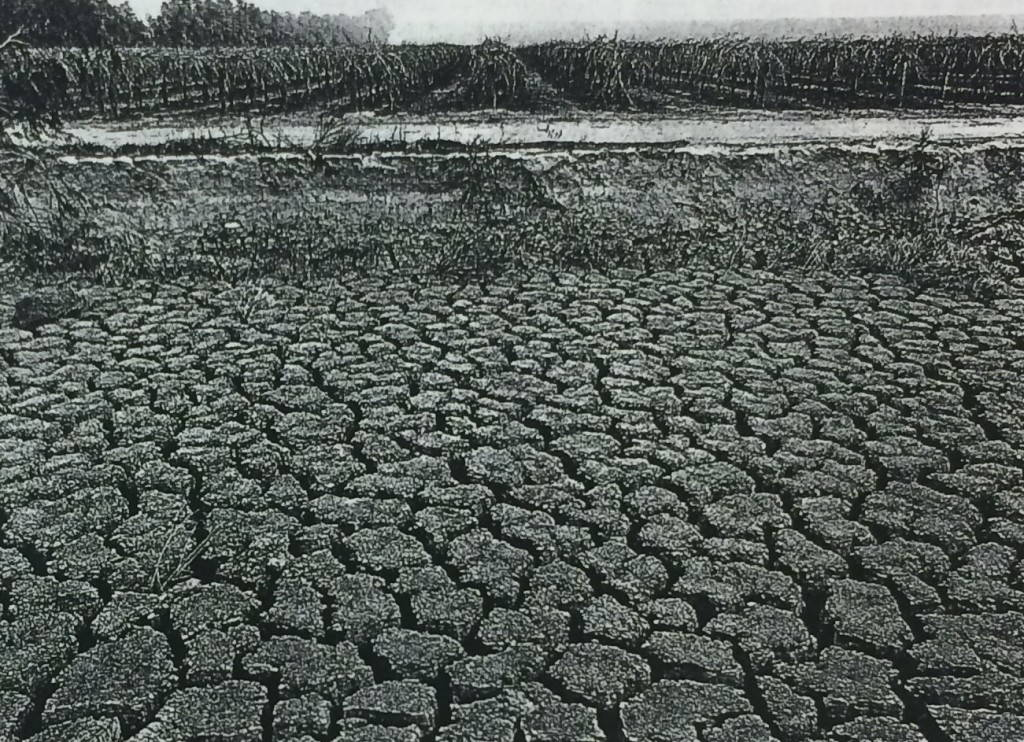 A Hundred Rivers Run Through It. Photo by Robert Dawson, Harpers Magazine, June 1998. Water Resources Collections and Archives, UC-Riverside.