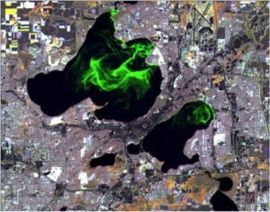 """Public Enemy Number One."" Satellite view of algal blooms on Lakes Mendota and Monona in Madison, Wisconsin. Photo: UW SSEC and WisconsinView."