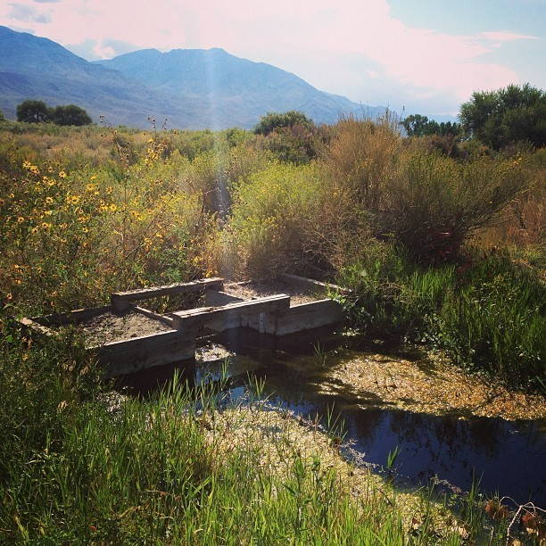 Irrigation gate near Owens Valley, California, 2013. Photo by flickr user Dustin Blakey (CC BY 2.0).