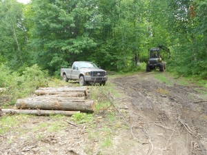 Logging operation in Langlade County, Wisconsin