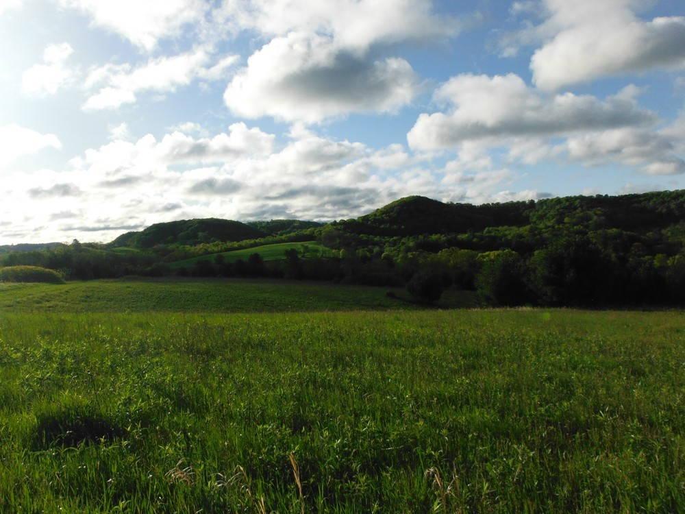 The Driftless hills. Photo by Luke Annear.