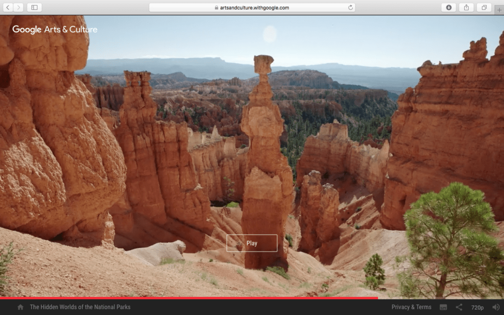 Screen shot from The Hidden Worlds of the National Parks, by Google Arts & Culture.