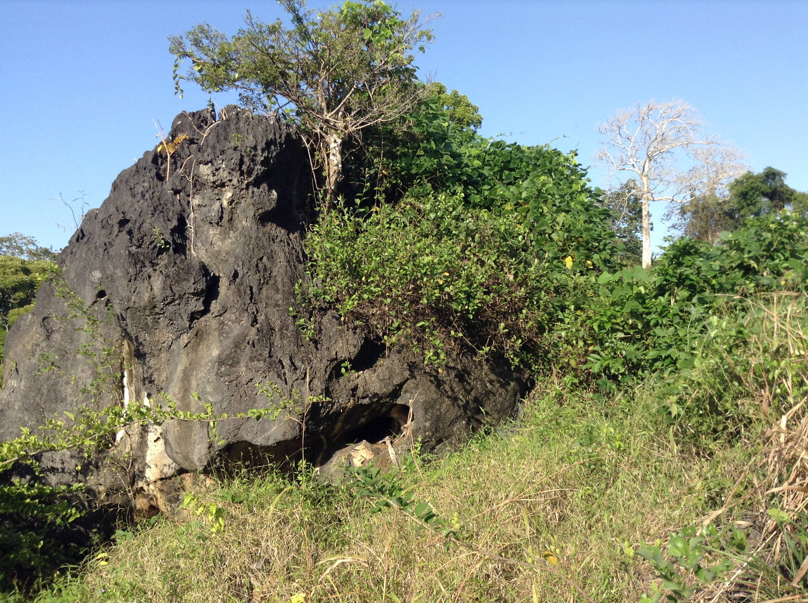 Wasini limestone rocks in Kambe, photo by author.