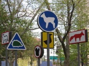 Animal signs in New York City. Photo by Mai Le, San Francisco, USA. Wikimedia Commons.