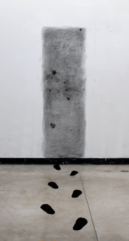 Anna Lehner, Anthropocene, Charcoal and Glass, 2016 Dimensions for install: 6 ft H, 3. 5 ft W, 5 ft D. This installation, placed in the common space of the University of Wisconsin-Madison's Art Loft, was a meditation on the effects of our man-made environments. Footprints lead to an impassible doorway created out of carbon.