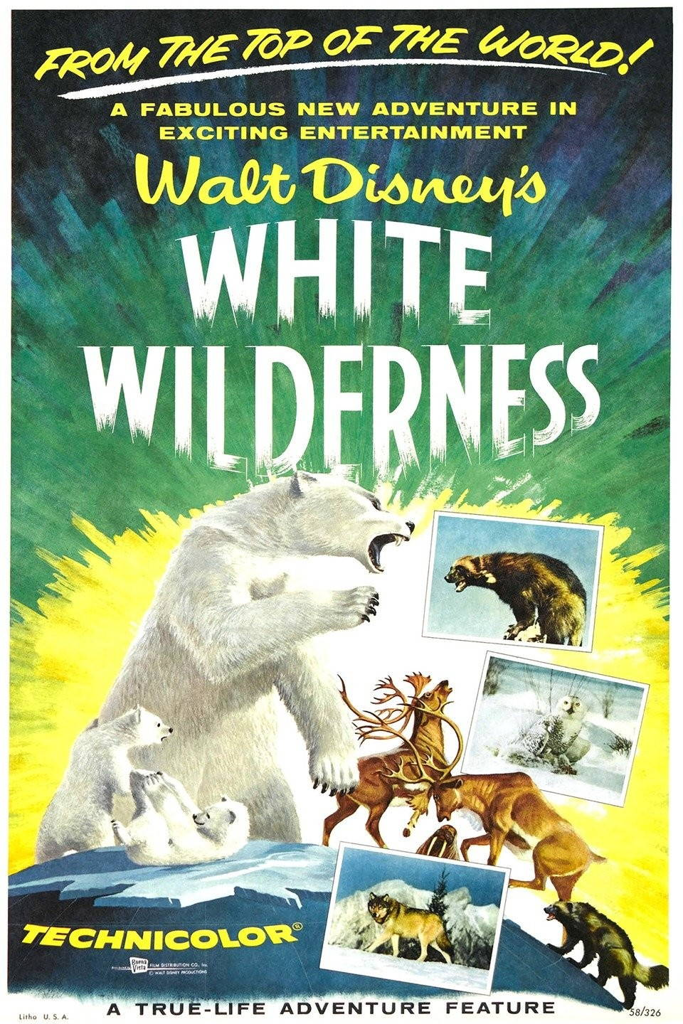 White Wilderness filmmakers offscreen forced lemmings off a cliff for the sake of drama but presented the film as true to life.