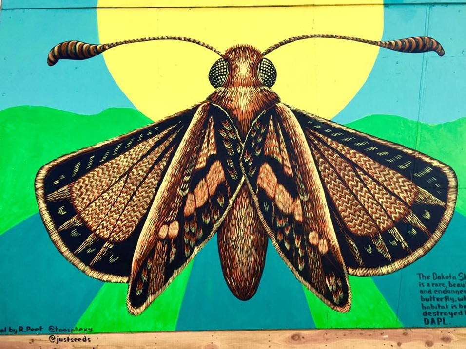 The camp was adorned by a Roger Peet's mural of the Dakota skipper butterfly, listed as threatened under the Endangered Species Act. Photo by Gary Kmiecik, November, 2016.