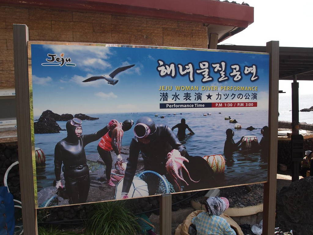 Haenyeo divers have become a tourist attraction on the island of Jeju. Photo by Walter Lim, June 2012.