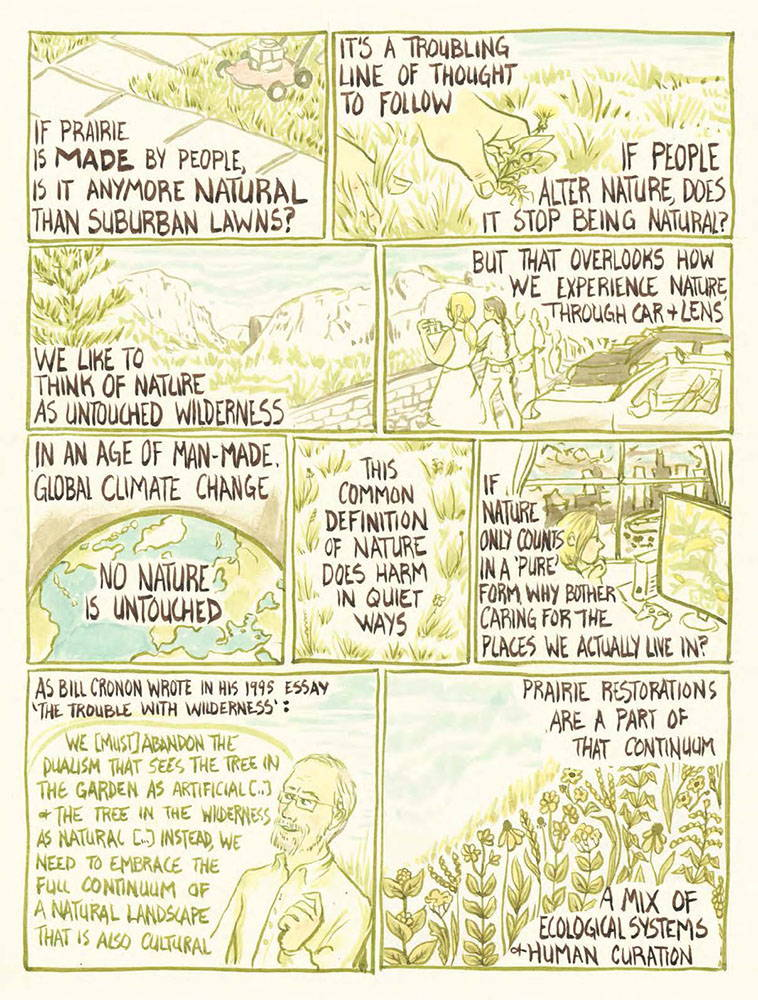 "If prairie is MADE by people, is it any more natural than suburban lawns? It's a troubling line of thought to follow. If people alter nature, does it stop being natural? We like to think of nature as untouched wilderness, but that overlooks how we experience nature through car and lens. In an age of man-made global climate change, no nature is untouched. This common definition of nature does harm in quiet ways. If nature only counts in a 'pure' form, why bother caring for the places we actually live in? As Bill Cronon wrote in his 1995 essay the ""Trouble with Wilderness"": We [must] abandon the dualism that sees the tree in the garden as artificial […] and the tree in the wilderness as natural […] instead, we need to embrace the full continuous of a natural landscape that is also cultural. Prairie restorations are a part of that continuum, a mix of ecological systems and human curation."