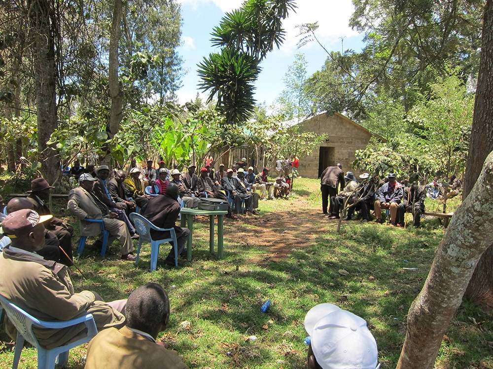 A meeting of the Njuri Ncheke, Ntunene, Meru County, Kenya. Photo by the author, 2014.
