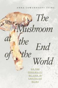 """The cover of """"The Mushroom at the End of the World"""" by Anna Tsing featured a watercolor painting of a mushroom."""