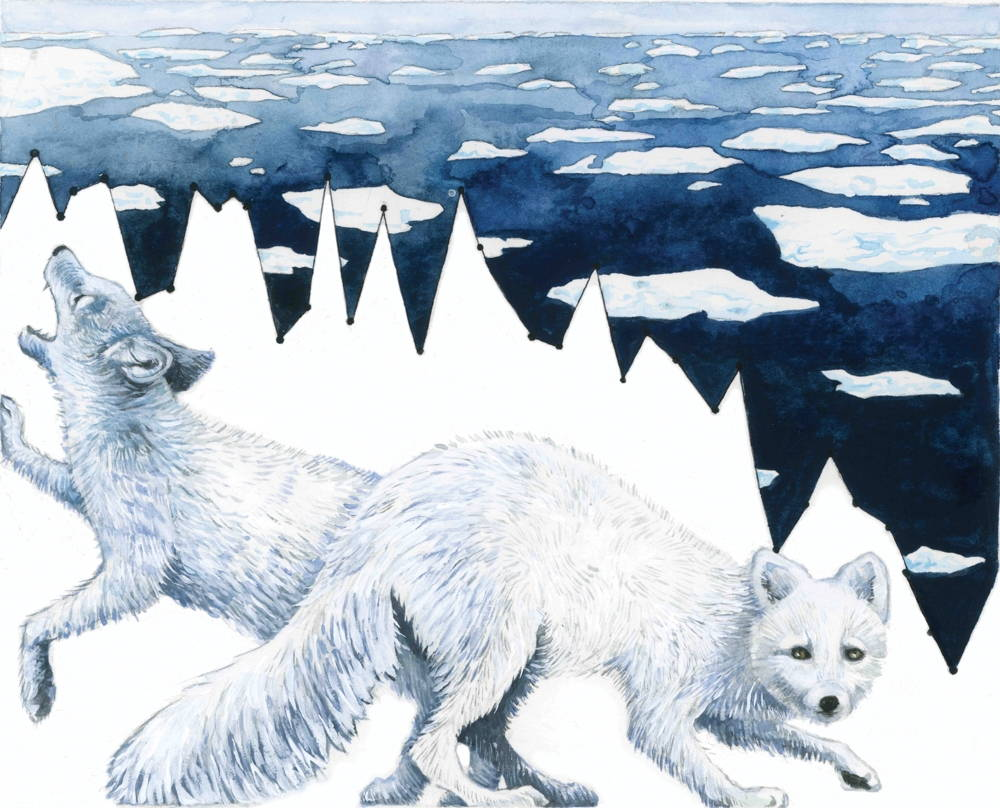 Jill Pelto illustration of two white foxes on a white background made to look like a glacier with its spikes formed by a line graph. In the background ice floats on a dark blue ocean.