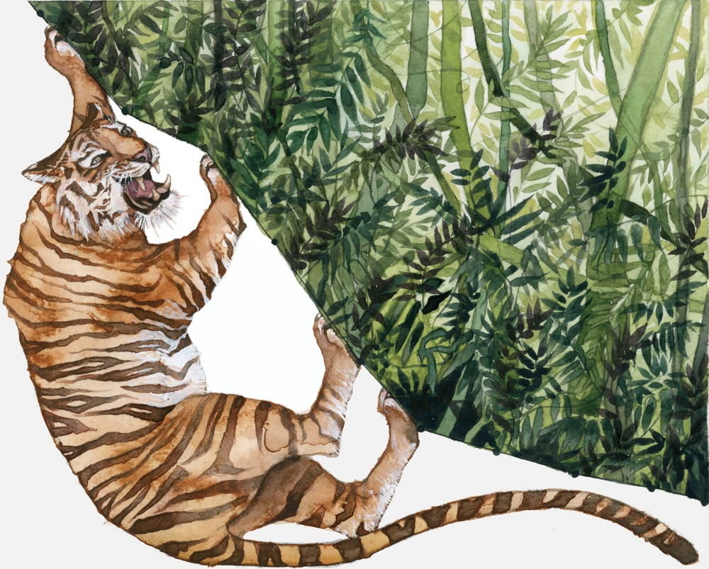 Jill Pelto illustration using a line graph dropping from left to right with the top-right half of the image filled with green leaves and the bottom left featuring a tiger on a white background.