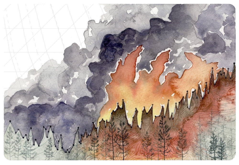 Jill Pelto illustration using a line graph rising from left to right with its spikes representing the tops of trees and a flames and smoke painted in the background.