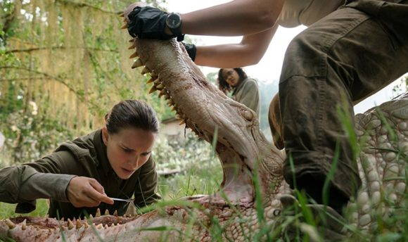 Natalie Portman inspects a crocodile in the film Annihilation